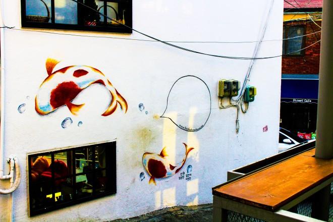 Naksan Koi Fish